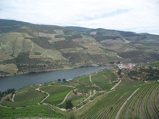 葡萄牙 Douro 游记