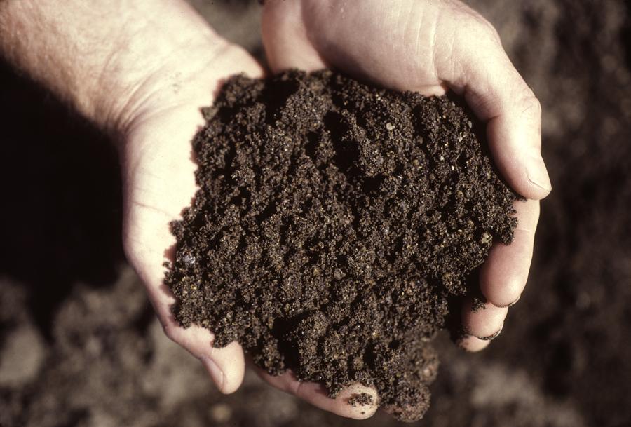 葡萄园各种土壤列表