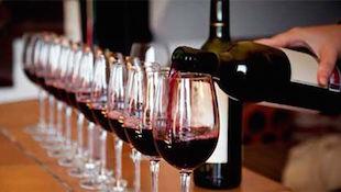 葡萄酒的专业品尝与趣味品鉴