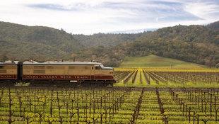 葡萄酒旅行中要牢记的黄金规则