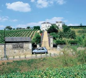 白葡萄酒称霸的卢瓦尔河谷漫游