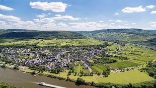 Pfalz 法尔兹