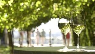 白葡萄酒的釀造