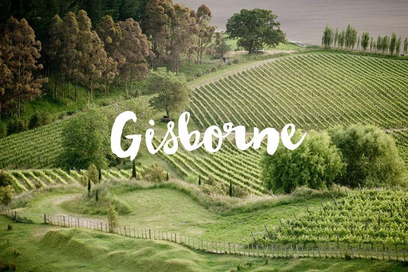 吉斯伯恩 Gisborne