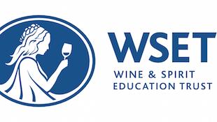 两周拿下WSET3证书攻略
