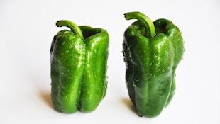 葡萄酒气味表之-蔬菜、草本植物篇