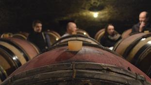 关于葡萄酒中的二氧化硫