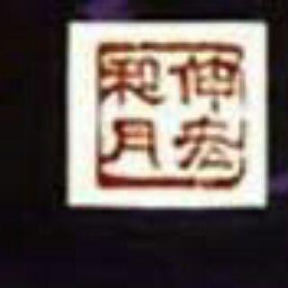 yin2316829