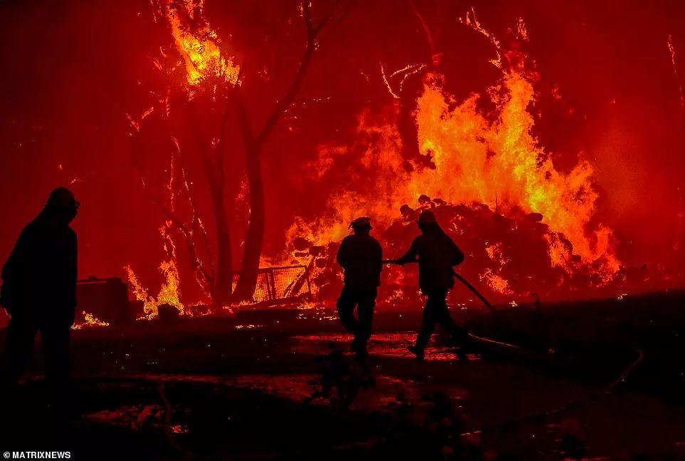 山火失控,阿德莱德山1/3葡萄园被毁,恢复或需数年