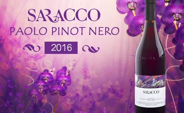 【小草黑皮諾】Paolo Saracco Pinot Nero 2016