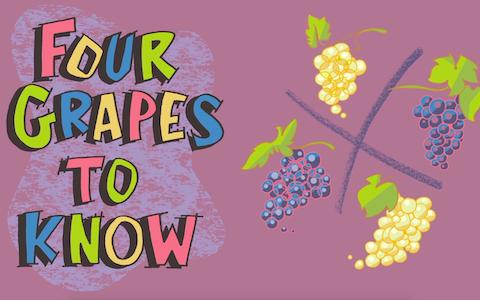 4个你必须了解的葡萄品种