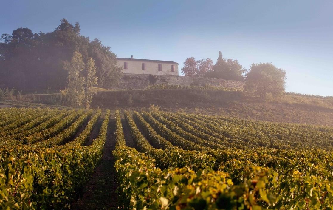 伟大的风土:祖先的遗产还是酒农的心机?