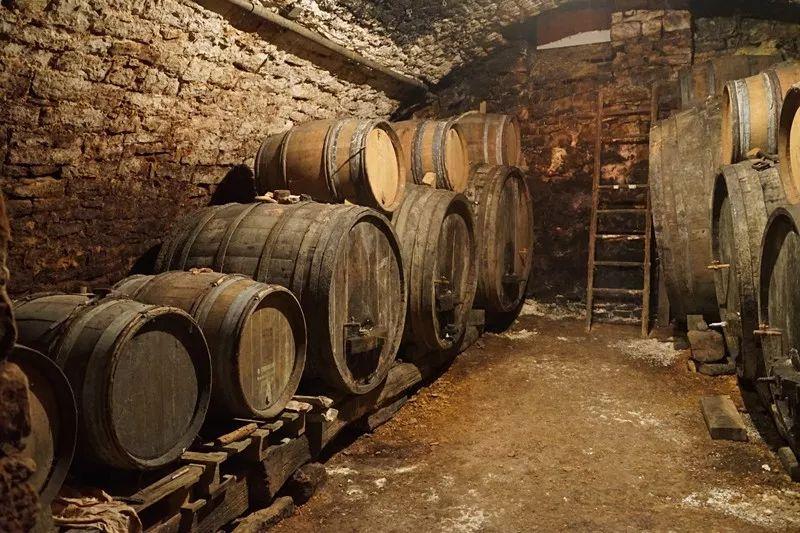 林裕森10月專欄 | 鼠系香氣 Mousiness in Wine