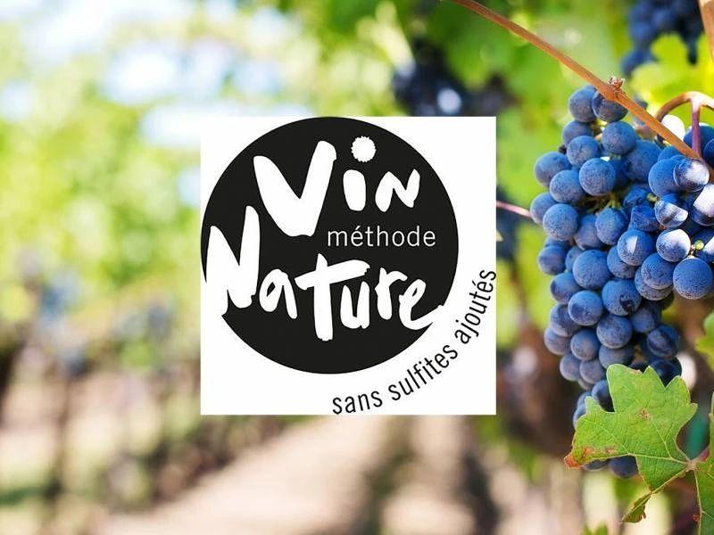 自然酒终于被正名!受法国葡萄酒业正式认可 | 酒斛发现