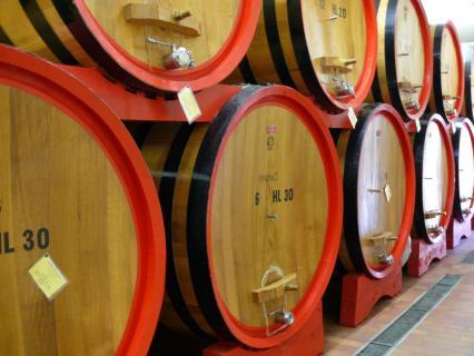 皮尼诺酒庄 Pinino