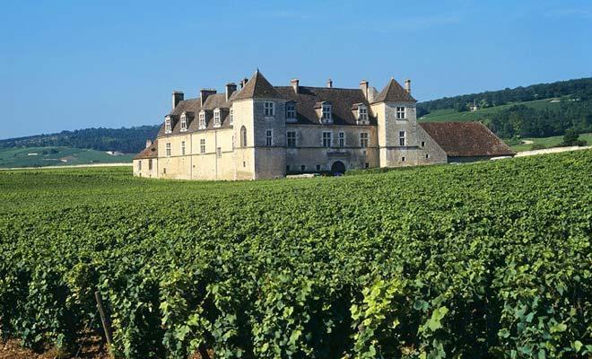 奥巴特利庄园Chateau Haut Batailley