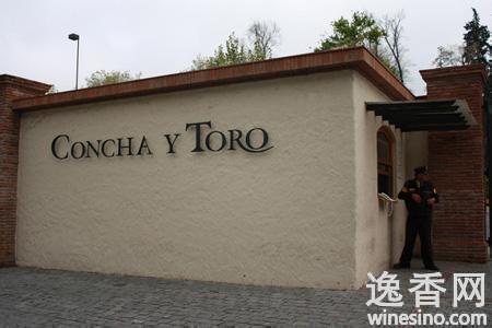 干露酒庄Concha y Toro