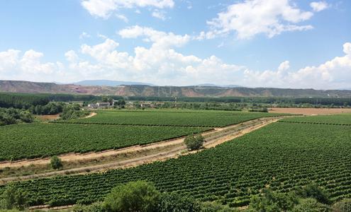 里奥哈维加酒庄 Rioja Vega