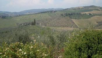 潘萨诺酒庄Terre di Prenzano