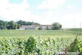 格拉娜酒庄Chateau du Glana