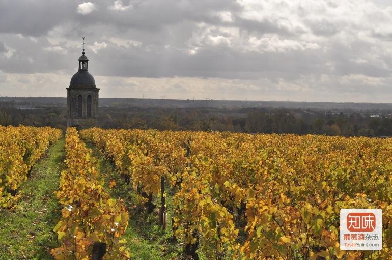 杰西斯·罗宾逊:于埃酒庄 Domaine Huet,白葡萄酒陈酿百年