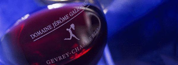 葡萄酒投资 锁定十家极具潜力的勃艮第科奇酒庄