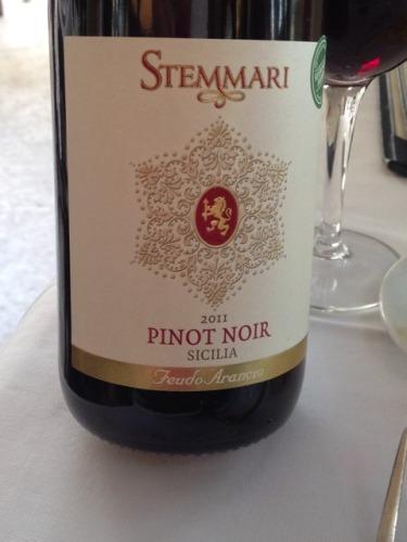 阿兰斯奥黑皮诺干红Feudo Arancio Stemmari Pinot Noir