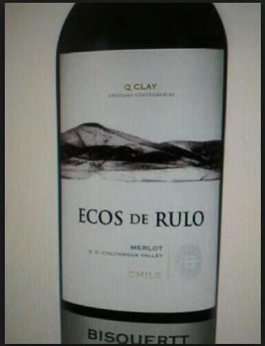 彼斯克提回声梅洛干红Vina Bisquertt Ecos de Rulo Merlot