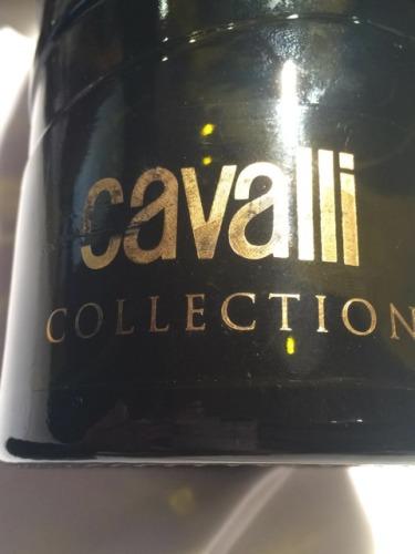 卡沃利臻选干红(限量版)Cavalli Tenuta degli Dei Cavalli Collection