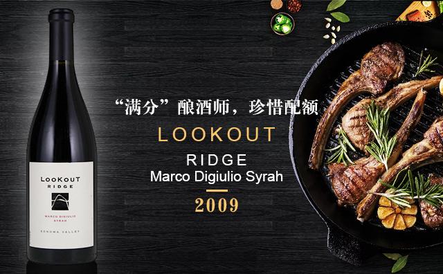 【車庫佳釀】Lookout Ridge Marco Digiulio Syrah 2009