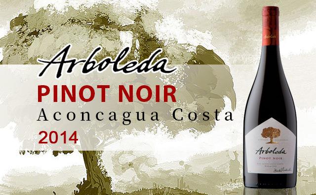 "【""小树林""】Arboleda Pinot Noir Aconcagua Costa 2014"