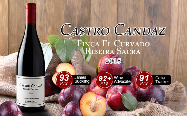 【低產杰作】Castro Candaz 'Finca El Curvado', Ribeira Sacra 2015