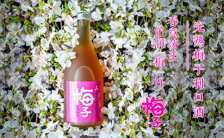 """【沁润""""梅""""好】船坂酒造 完熟梅子利口酒"""