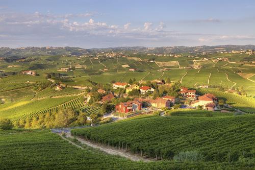 皮埃蒙特 Piedmont