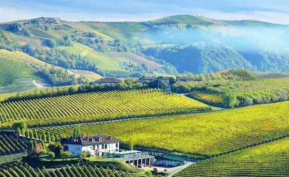 意大利最顶级葡萄酒产区名单大全