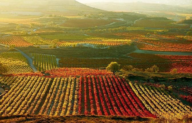 拉里奥哈省 (La Rioja)