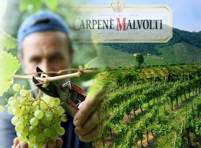 卡玛酒庄Carpene Malvolti